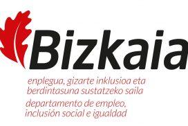 Logo Diputación Foral de Bizkaia - AFAE