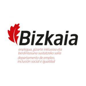 Diputación foral de Vizcaya Logotipo AFAE